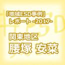 thumbnail_esdpractices2017_koshiduka